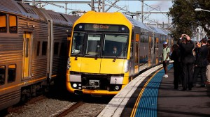 waratah_train